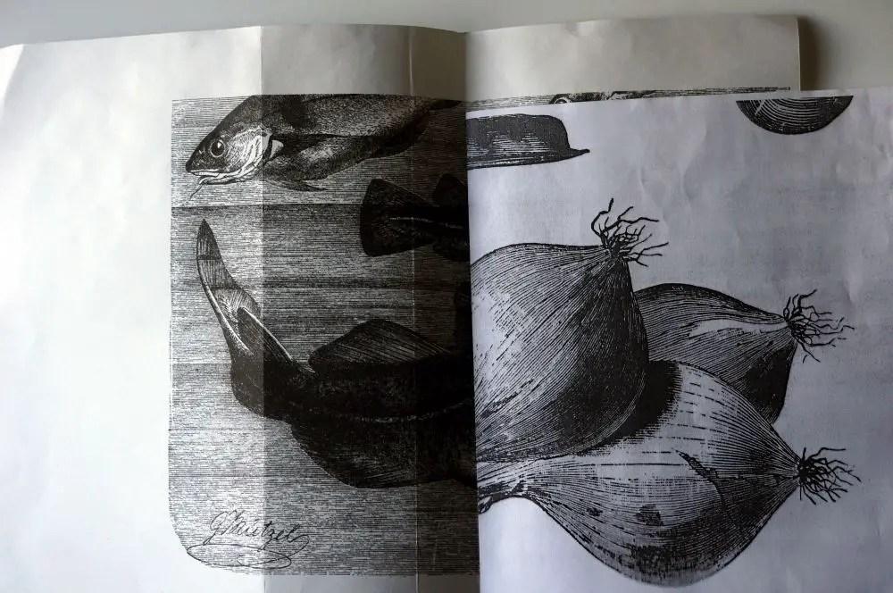 Resultado final - ilustração