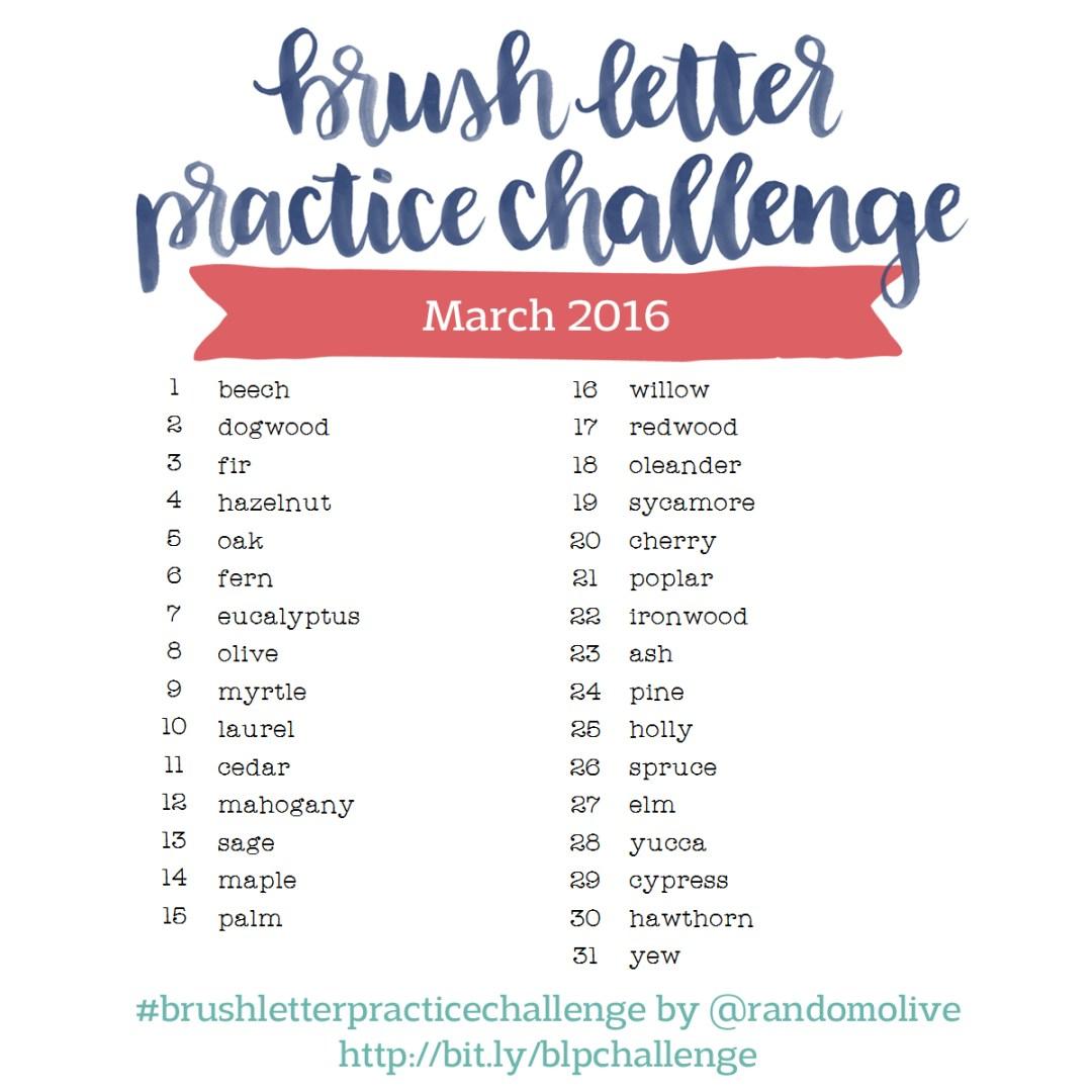 Brush Letter Practice Challenge
