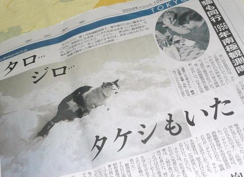 タケシの新聞記事