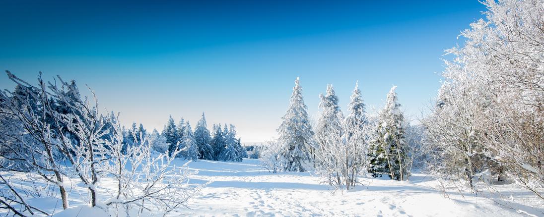 Randonnée facile en raquettes à neige