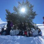 Raquettes à neige à Gréolières les Neiges