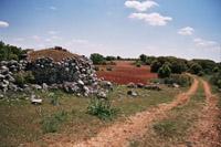 La campagne près d'Alocen