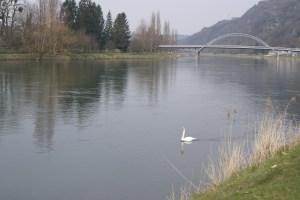La Meuse à Chooz