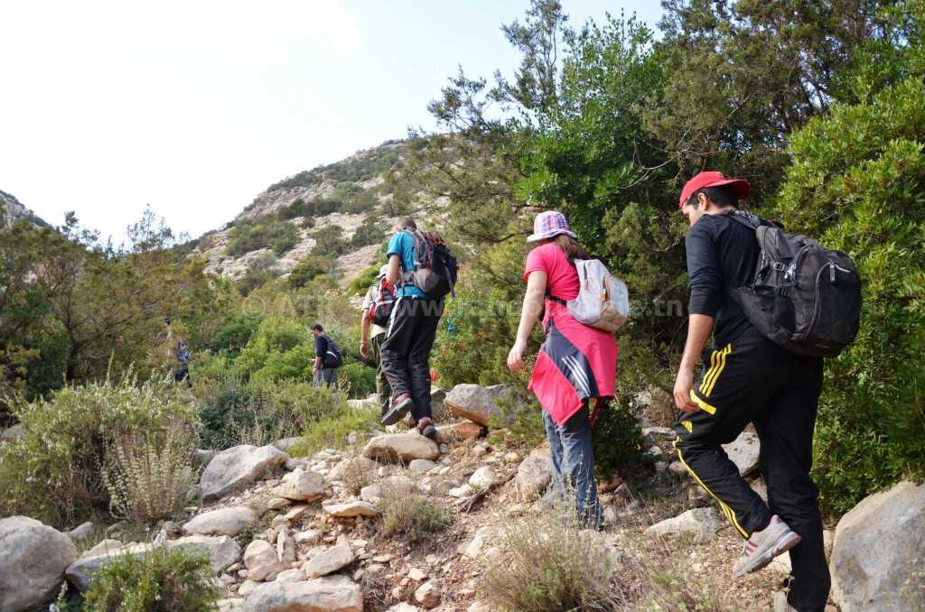 Randonnée à Ain Khanfous Oueslatia - randonnée