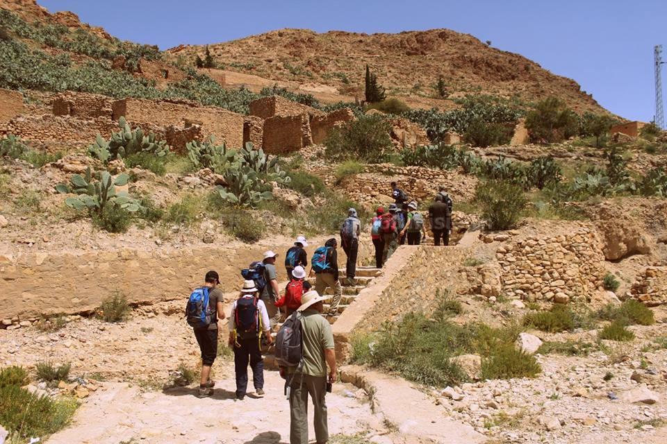 Gafsa: Intégrale Orbata à Bouhedma