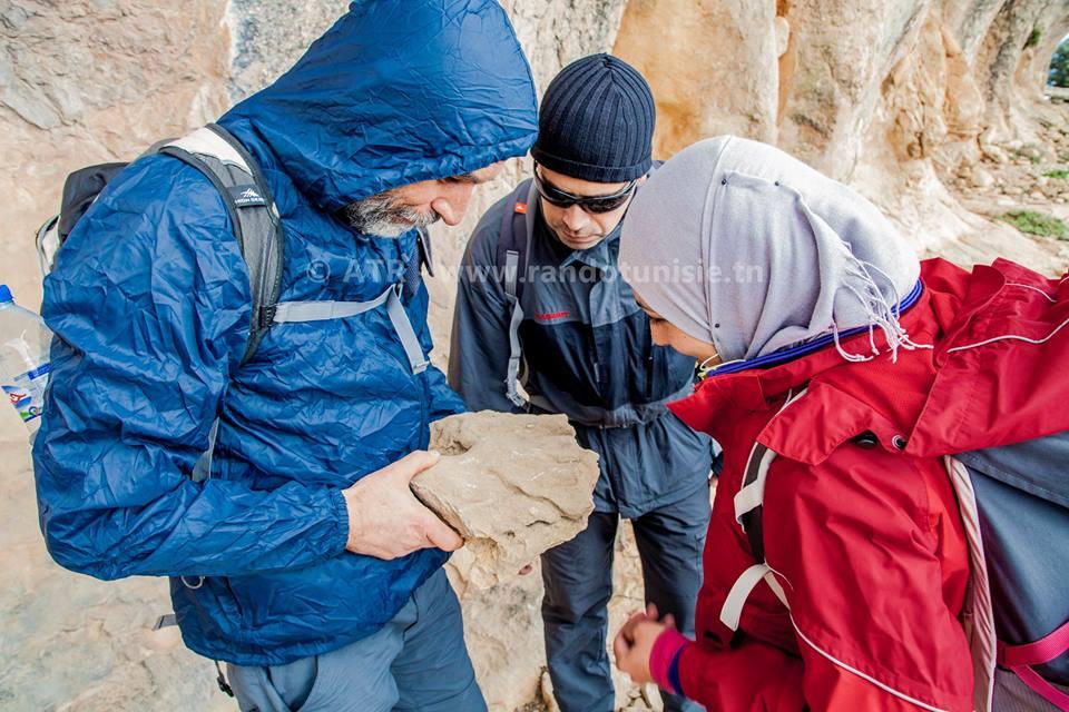 pédagogie de randonnée