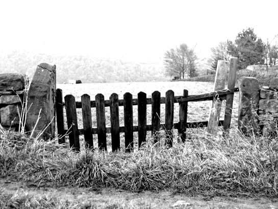 scottish gate