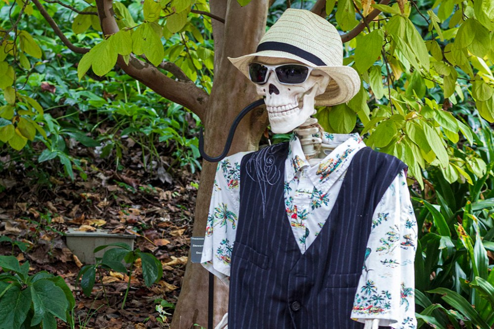 Skeleton with Panama hat and glasses wearing a shirt and vest.