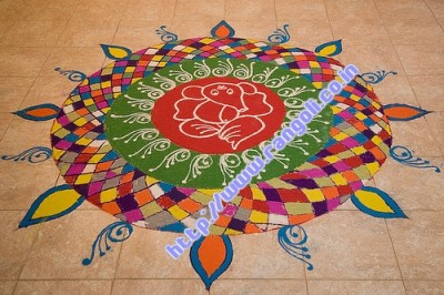 Peacock Rangoli Designs Flower Patterns Festival Rangoli