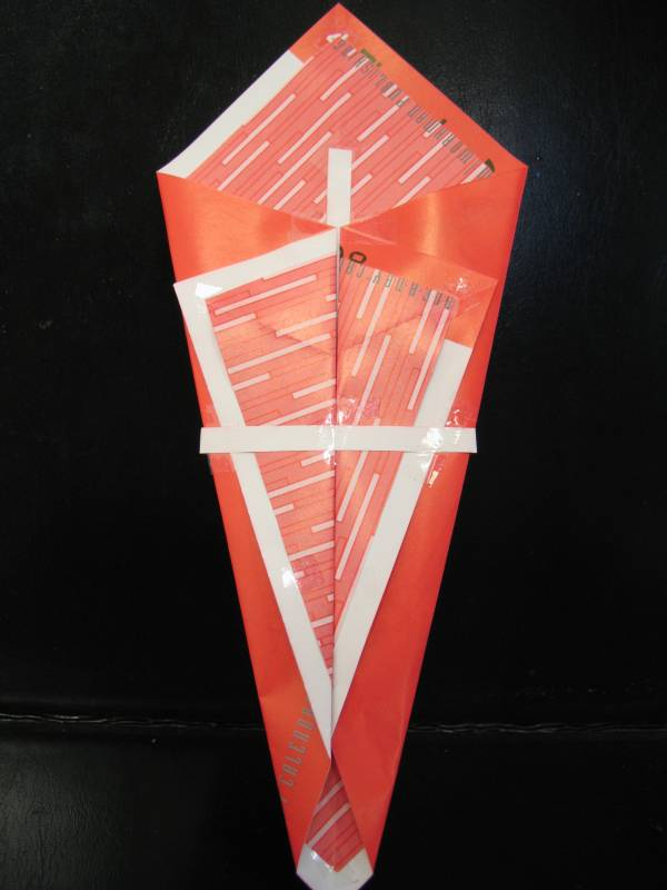 Irrelevance Glorified  origami