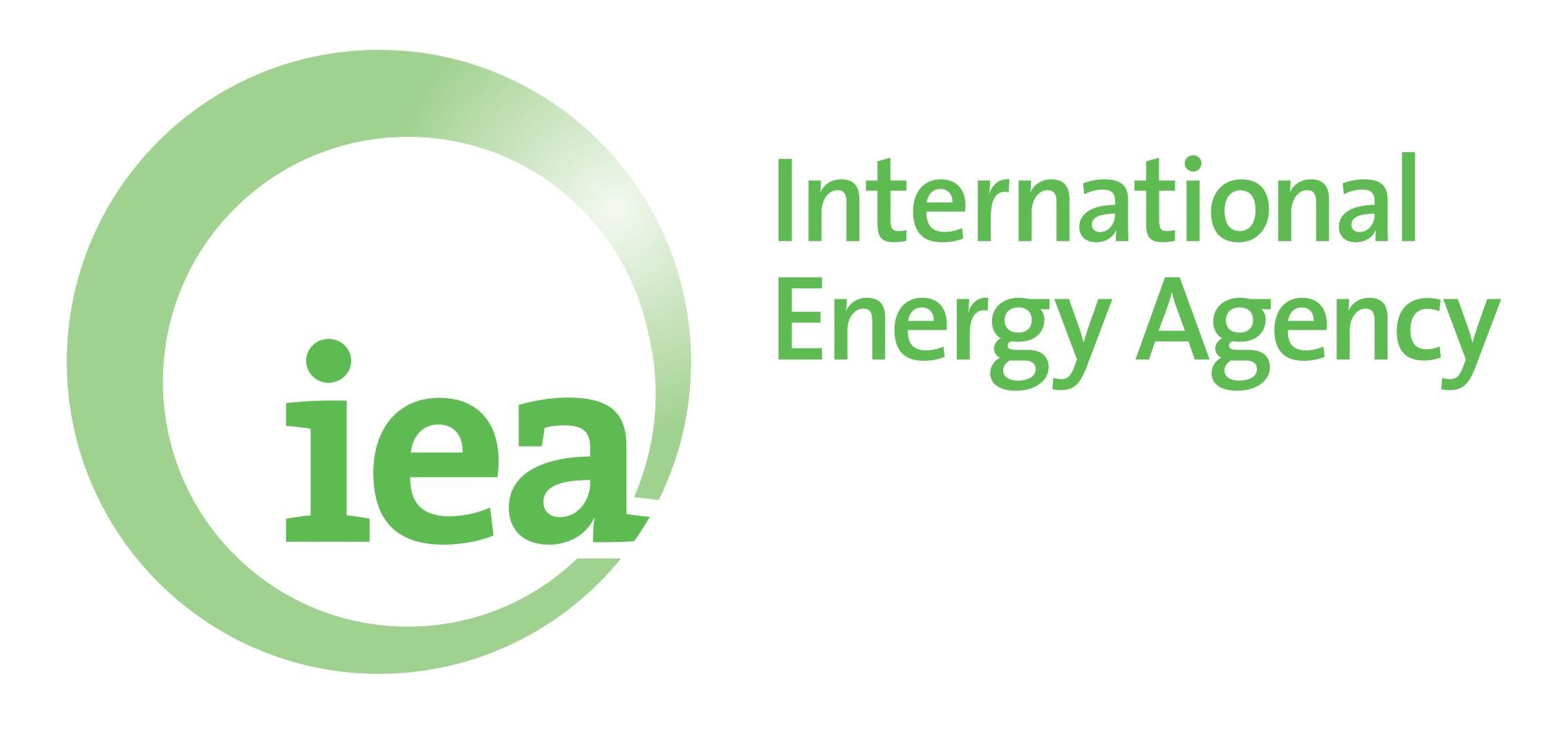 Image result for int energy agency Logo