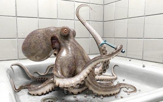 Playstation - Octopus