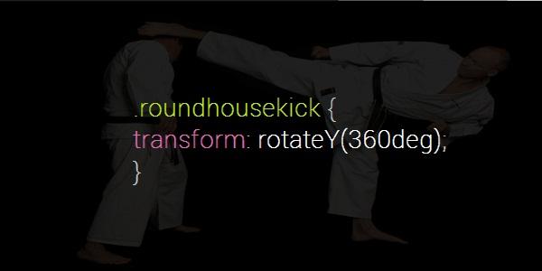 roundhousekick