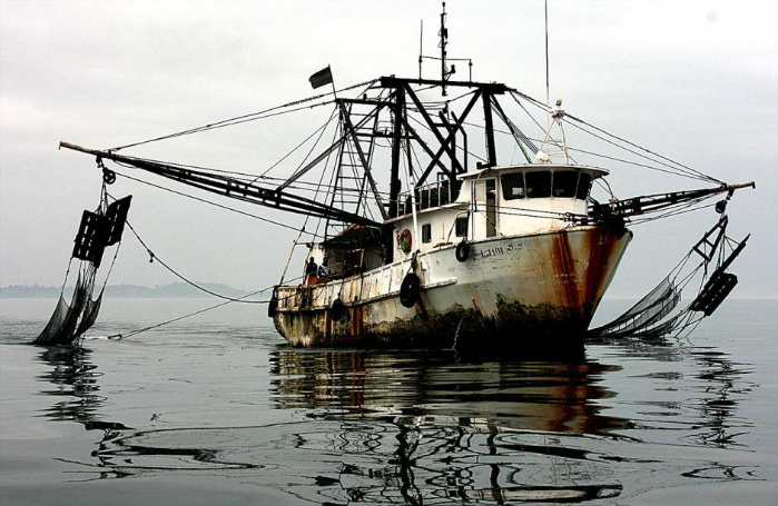 iuu fishing