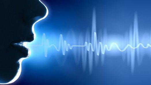 google Voice AI