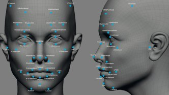 Genes That Determine Our Facial Features