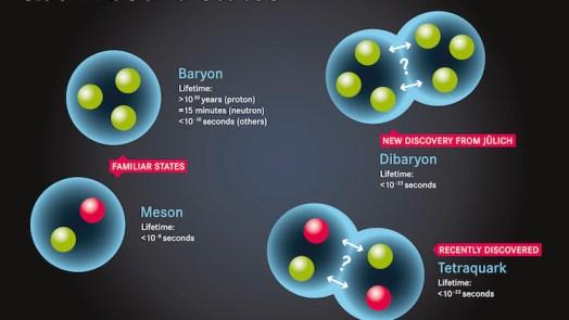 Baryon - New Type Subatomic Particle