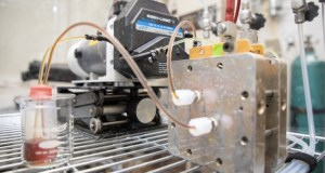 Long-Lasting Organic Flow Battery