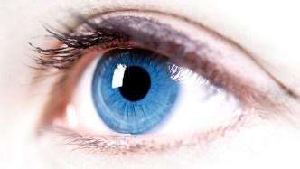 Scientists Grew Human Retina