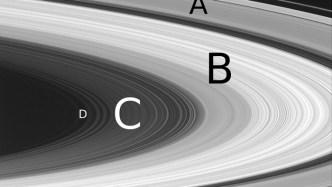 Saturn's Inner Rings