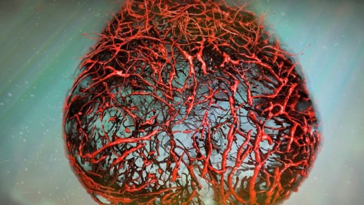 Artificial 3D Human Blood Vessels