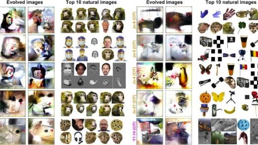 AI reveal neurons in brain visual cortex