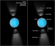 Temperature of Uranus Rings