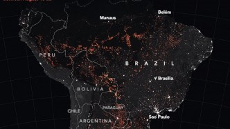 Amazon Rainforest Fires in 2019