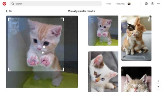 Pinterest Visual Search - reverse image search engines apps