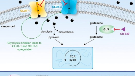 suppressing growth of cancer with glutor