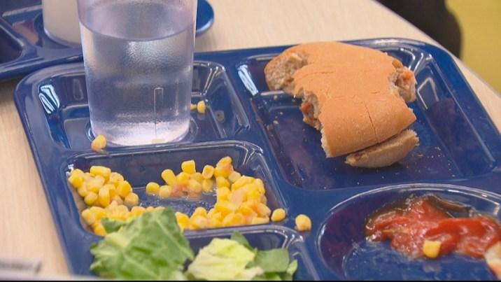 School waste food