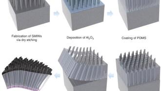 highly Efficient Transparent Solar Cells