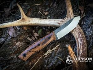 Cohutta Knife Tellico at Ransom Wilderness Co