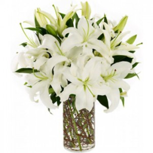 6 White Lilies in a Vase