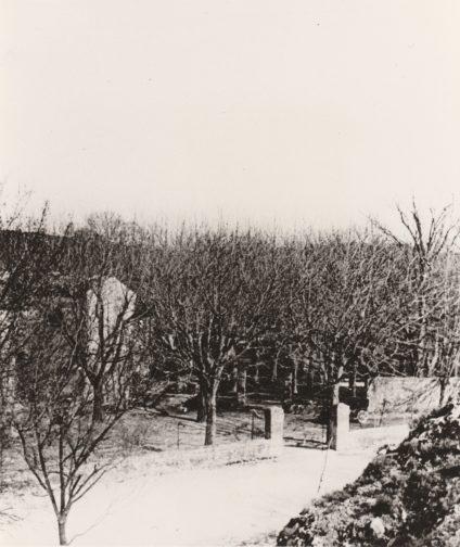 Le Moulin de Vernègues ? Collection Mireille Caire (reproduction)