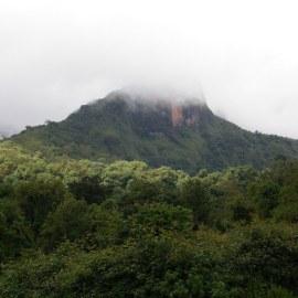 Gestion des interventions d'urgence pour lutter contre les incendies qui ont frappés le Parc national des Montagnes de Bale en Ethiopie