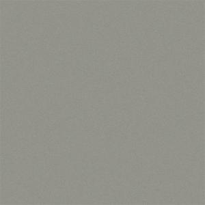 "Aluminum Flat Sheets Pac-Clad® SILVER METALLIC 032"""