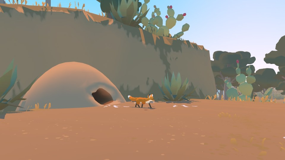 A fox coming out of its hole in a desert landscape with cacti