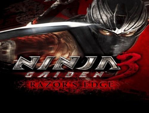 cover image Ninja Gaiden 3