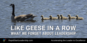 Geese in a Row - What we Often Forget About Leadership