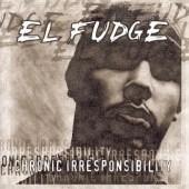Fudge500