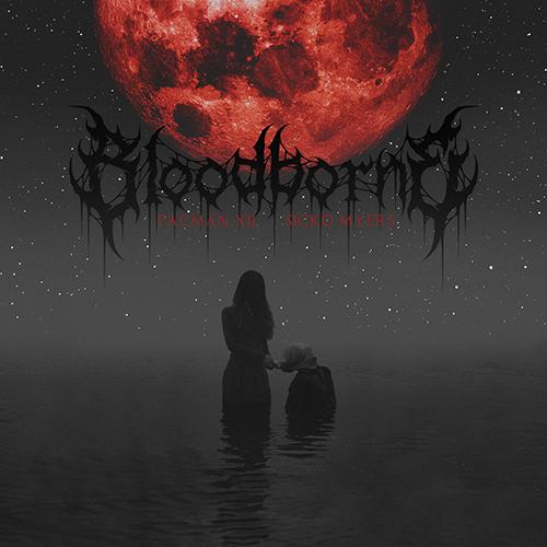 """""""Bloodborne"""" e' il nuovo EP di Pacman XII"""