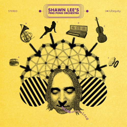 Shawn Lee's Ping Pong Orchestra – Voices And Choices