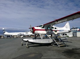 You know you're in Alaska when everything on the ramp is either a float plane, amphibian, tailwheel, or plastered with the Alaska Airlines logo.