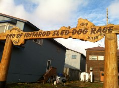 The finish line of the Iditarod, an annual 1,000+ mile dogsled race from Anchorage to Nome in the dead of winter.