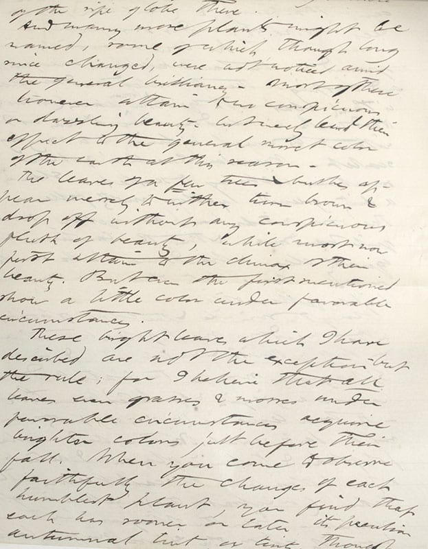 The Manuscript Edition of The Writings of Henry David Thoreau.