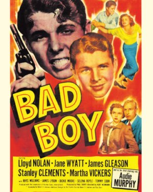 Bad Boy Rare & Collectible DVDs & Movies