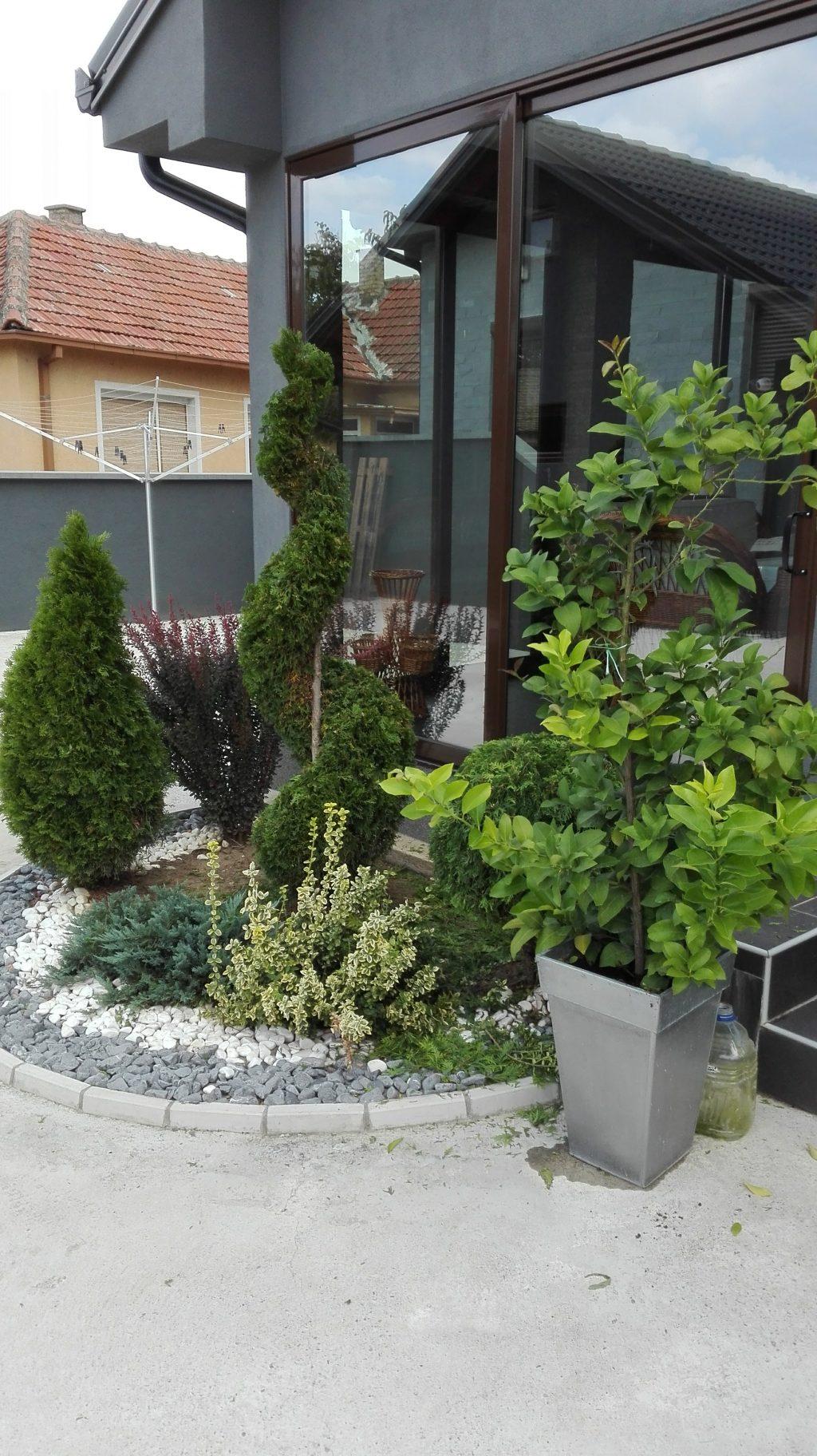 Uređenje privatnog dvorište u Dobanovicima