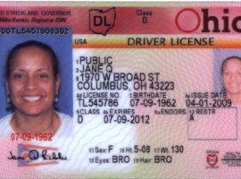 Ohio License Status >> Lawful Status Archives Raslan Pla And Company