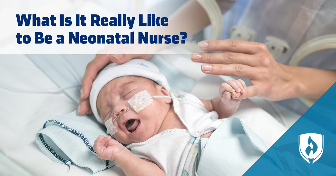 What is it Really Like to Be a Neonatal Nurse? | Rasmussen ...